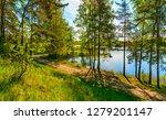 sunny summer morning outside... | Shutterstock . vector #1279201147