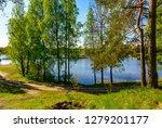 sunny summer morning outside... | Shutterstock . vector #1279201177