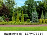 park with different plants... | Shutterstock . vector #1279478914