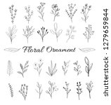 Feminine Floral ornament collection. Hand drawn of laurels, wrath, flower, leaves, nature for wedding card.