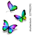 Stock photo three color butterflies isolated on white 127982291