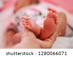 hands mother hold on feet baby... | Shutterstock . vector #1280066071