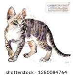 Stock photo australian mist cat watercolor home pet illustration cats breeds series domestic animal 1280084764