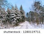 winter forest in the swabian...   Shutterstock . vector #1280119711