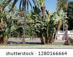 nice  france   september 25 ...   Shutterstock . vector #1280166664