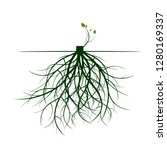 tree roots and germinate limb.... | Shutterstock .eps vector #1280169337