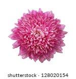 beautiful chrysanthemum... | Shutterstock . vector #128020154