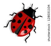 red beetle isolated over white. ... | Shutterstock .eps vector #128031104