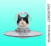 funny art collage. concept cat...   Shutterstock . vector #1280367907
