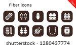 fiber icon set. 10 filled...   Shutterstock .eps vector #1280437774
