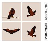 imposing hawks birds with... | Shutterstock .eps vector #1280460781