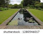 Rectangular Ornamental Pond In...