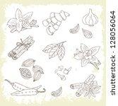 Hand Drawn Spice Set