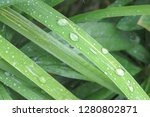 the image of a background with...   Shutterstock . vector #1280802871