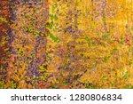 background or texture   Shutterstock . vector #1280806834