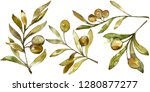 green olives watercolor... | Shutterstock . vector #1280877277