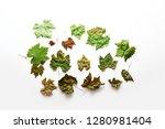 leaf background   grape leaves... | Shutterstock . vector #1280981404
