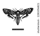 death's head hawk moth drawing... | Shutterstock .eps vector #1281056821