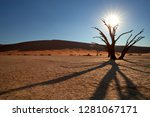 picturesque deadvlei desert... | Shutterstock . vector #1281067171