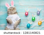 Stock photo cute funny beautiful cat with rabbit ears easter background with eggs view from above easter 1281140821