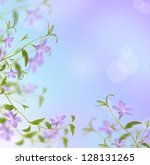 Periwinkle Isolated On White