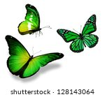 Stock photo three green butterfly isolated on white background 128143064