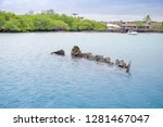 Sunken Sailboat In Galapagos I...