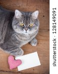 Cat  Heart And Love Card
