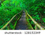tropical rain forest path asia... | Shutterstock . vector #128152349