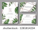 vector green leaf plant...   Shutterstock .eps vector #1281814234