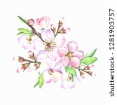 spring flowering branch...   Shutterstock . vector #1281903757