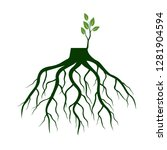 tree roots and germinate limb.... | Shutterstock .eps vector #1281904594