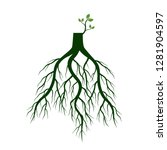 tree roots and germinate limb.... | Shutterstock .eps vector #1281904597