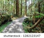 lake matheson track  new...   Shutterstock . vector #1282123147