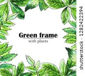 frame of plants. painted... | Shutterstock . vector #1282422394