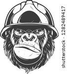vector illustration  gorilla... | Shutterstock .eps vector #1282489417