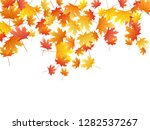 maple leaves vector background  ... | Shutterstock .eps vector #1282537267