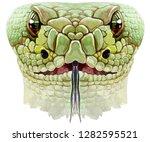 dragon snake horoscope...   Shutterstock . vector #1282595521