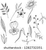 Vector Illustration   Hand...