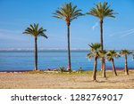 palm trees on a beach at costa... | Shutterstock . vector #1282769017