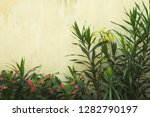ruined wall background with a... | Shutterstock . vector #1282790197