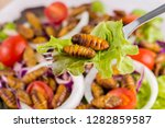 Food insects  worm insect or...