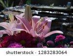 pink flower florist bouquet... | Shutterstock . vector #1283283064