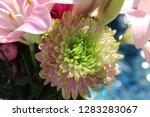 pink flower florist bouquet... | Shutterstock . vector #1283283067