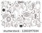 sketch vector graphic magical... | Shutterstock .eps vector #1283397034