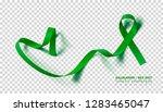 gallbladder and bile duct...   Shutterstock .eps vector #1283465047