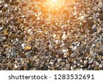 nature sunrise spring concept... | Shutterstock . vector #1283532691