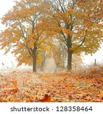 foggy autumn road with trees | Shutterstock . vector #128358464
