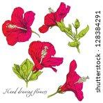 hand drawing hibiscus flower... | Shutterstock .eps vector #128384291