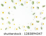 frame made of chamomiles ... | Shutterstock . vector #1283894347